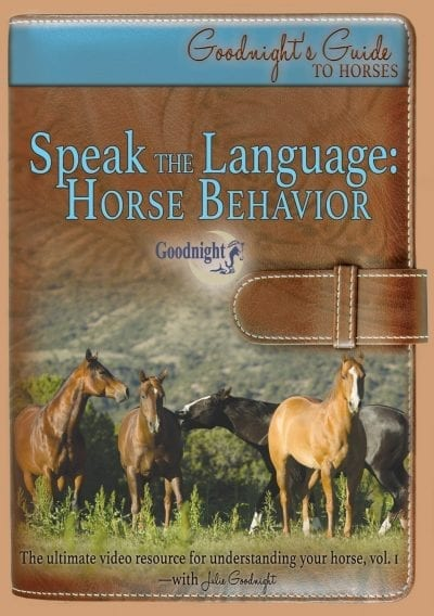 Speak the Language: Horse Behavior