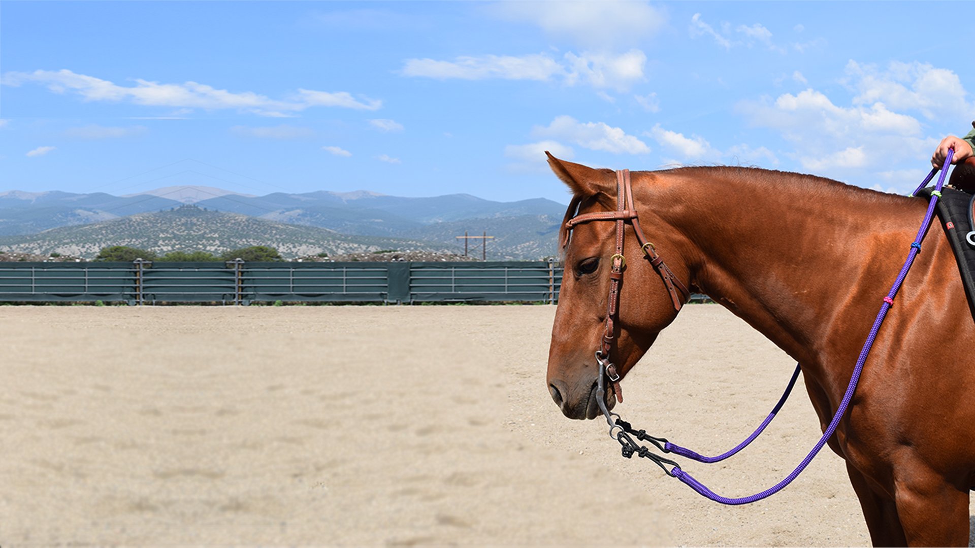 Get Your Rope Reins