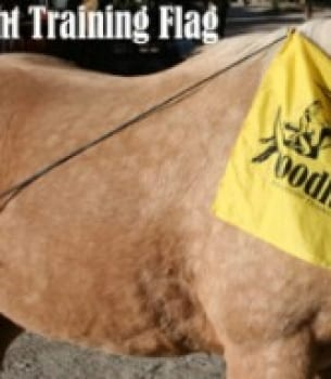 Goodnight Training Flag and Free DVD (Stress Free Trailering)