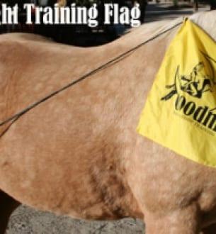 Goodnight Training Flag