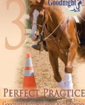 Perfect Practice DVD with Free Companion Prefect Practice Booklet