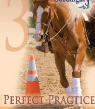 Goodnight's Principles Of Riding: Perfect Practice (Streaming)