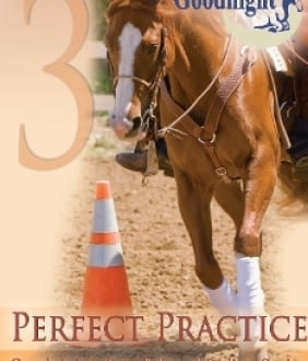 Goodnight's Principles of Riding: Perfect Practice (DVD)