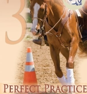 Goodnight's Principles of Riding, vol. 3: Perfect Practice (DVD)