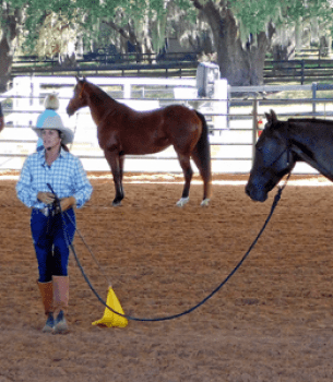 Clinic – Julie Goodnight Horsemanship Clinic
