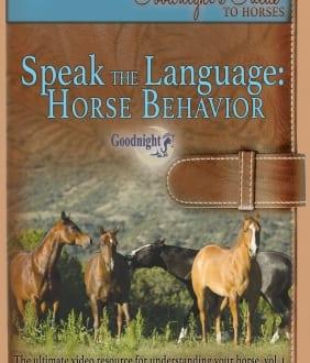Speak the Language: Horse Behavior (Streaming Version)