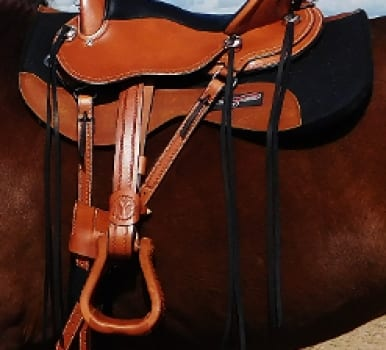 Cascade Crossover Saddle – IN STOCK