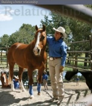 From the Ground Up: Round Pen Reasoning (DVD)